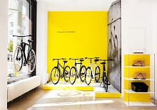 VANMOOF in Deutschland